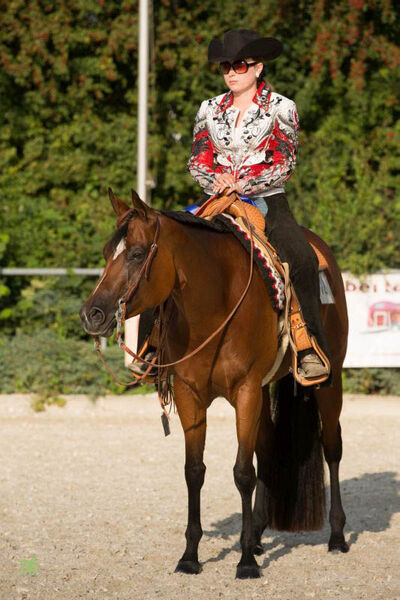 Raisin My Dress - Winner under both judges, Western Pleasure Open, Süd-Futurity 2014, Thierhaupten