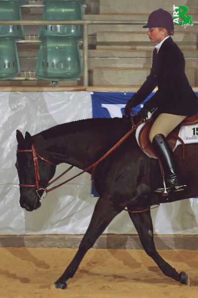 Techniques Pleasure & Lisa Holz in Hunter under Saddle